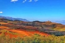 东川红土地——就像是上天涂抹的彩绘