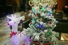 축 성탄절~메리크리스마스^^