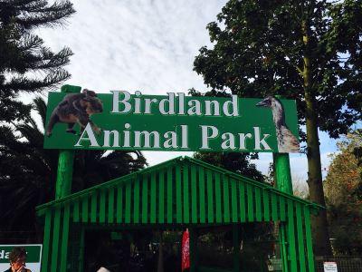 Birdland Animal Park