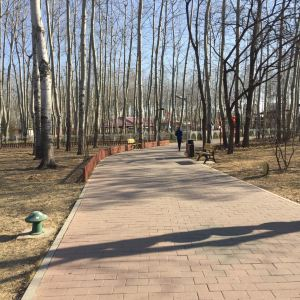 仁和公园旅游景点攻略图