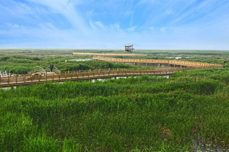Weishan Lake National Wetland Scenic Area2