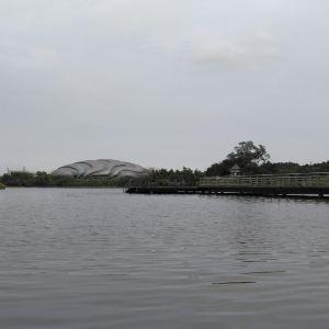 中心湖公园旅游景点攻略图