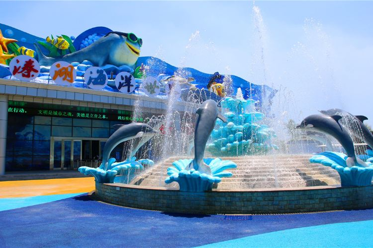 Qinhu Lake Ocean World4
