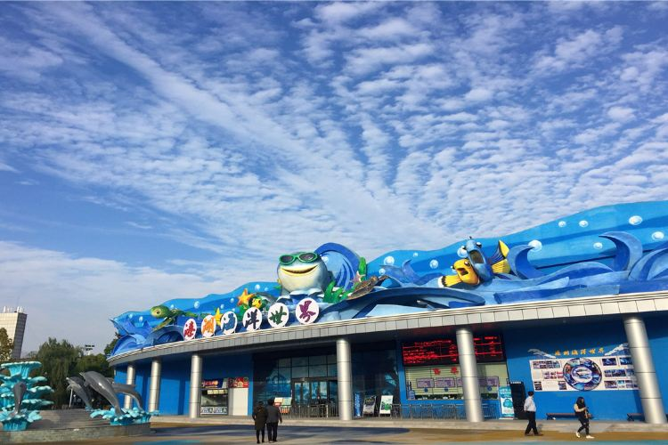 Qinhu Lake Ocean World2