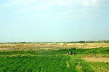 新疆甘甜之州(吐鲁番盆地)中的现代坎儿井