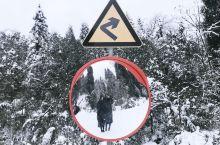 雅安龙苍雪景