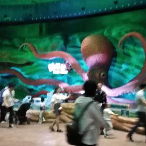 青岛海上嘉年华主题乐园旅游景点攻略图