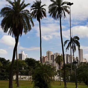 安提瓜和巴布达游记图文-巴西游记之圣保罗-玛瑙斯-里约-依瓜苏