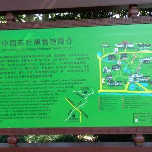 中国茶叶博物馆旅游景点攻略图