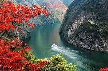 国内也有堪比日本的红叶季!沿江秋景已熟透,一路应季美食吃不停!