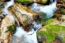 高山流水,溪水潺潺