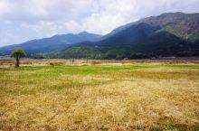 腾冲--北海湿地的景色会随着一年四季不停变化......