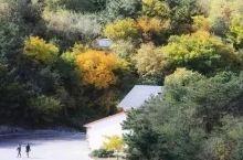 玩遍大连丨漫步深秋的棒棰岛,感受颜色渲染极致之美~