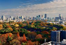 东京日式文化2日游