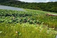 珲春防川莲花湖