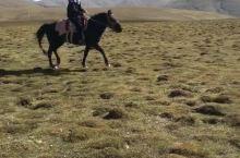 青海湖→茶卡盐湖 【骑马】