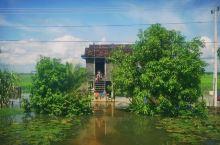 柬埔寨的特色水屋