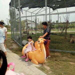 宿州野生动物园旅游景点攻略图