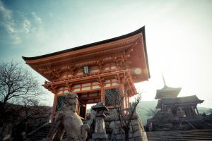 Kyoto,Recommendations
