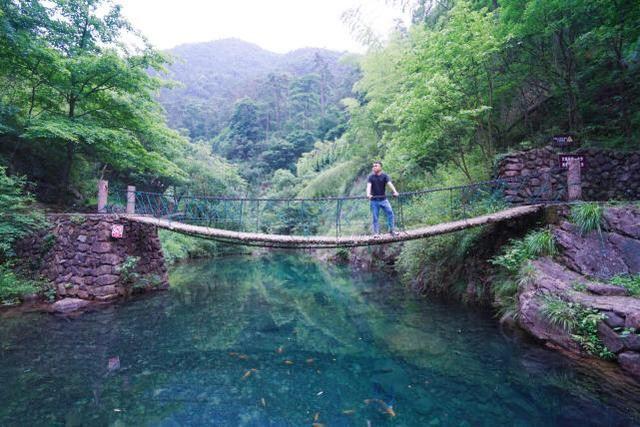 大奇山國家森林公園3