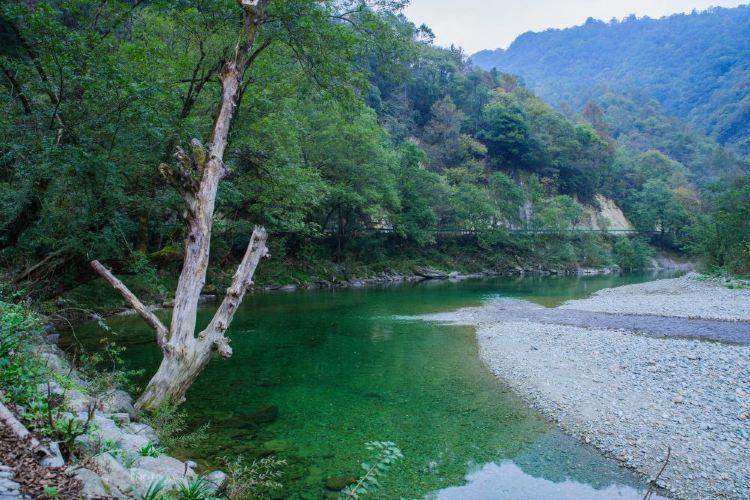 Yangba Natural Scenic District3
