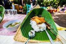 #向往的生活  我在印尼村落里炒咖啡豆,喂麝香猫。