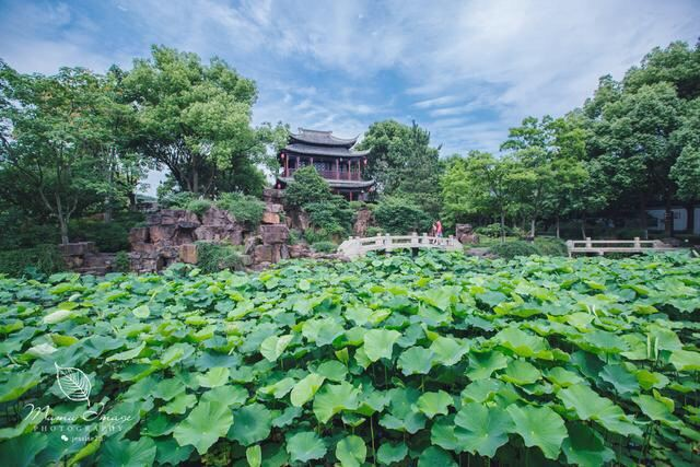 Zengzhao Garden2