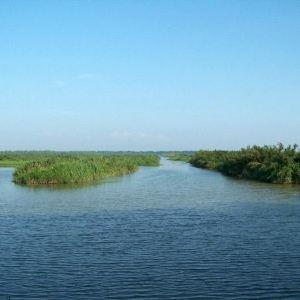 南沙湿地旅游景点攻略图