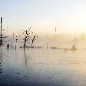 奶头河旅游景点攻略图