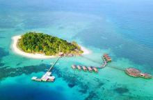 兰卡央海龟节,一次守护海洋精灵的爱心之旅
