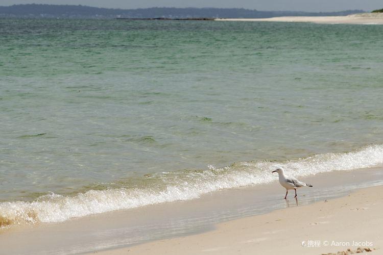 Hawksnest Beach2