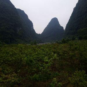 龙宝大峡谷旅游景点攻略图