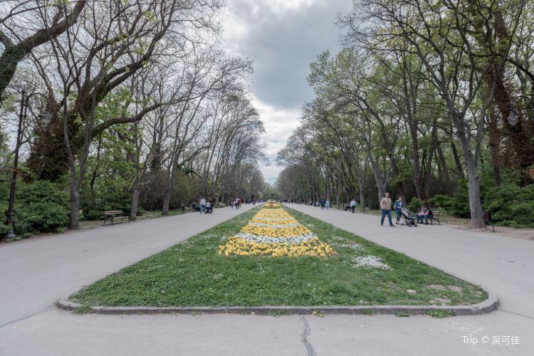 Primorski公園3