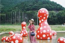 日本旅行 | 以鹿为梦的小众宫城石卷「Reborn Art