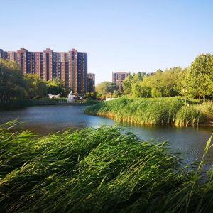 塔山河公园旅游景点攻略图