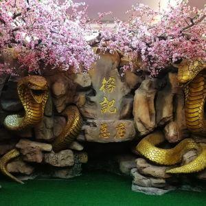 榕记·专注蛇宴(番禺总店)旅游景点攻略图