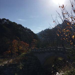 雪岳迎日公园旅游景点攻略图