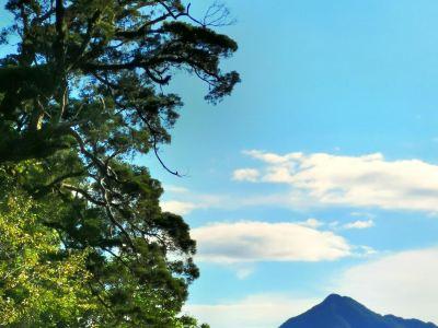 黎母山森林公園