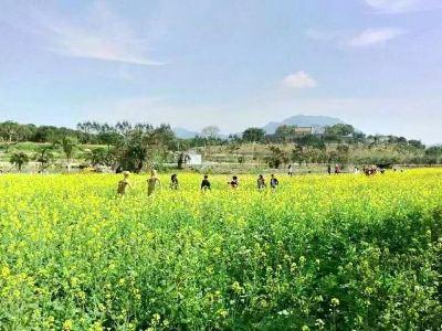 Pengcheng Thousand-flower Valley
