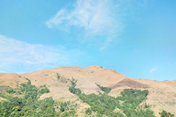 天馬山生態旅遊區