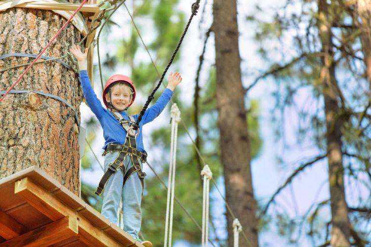 Treetop Adventure Park1