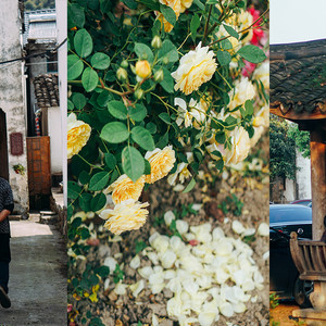 富阳区游记图文-富阳龙门古镇 那些人间烟火气,藏在每一条小巷、每一个村庄