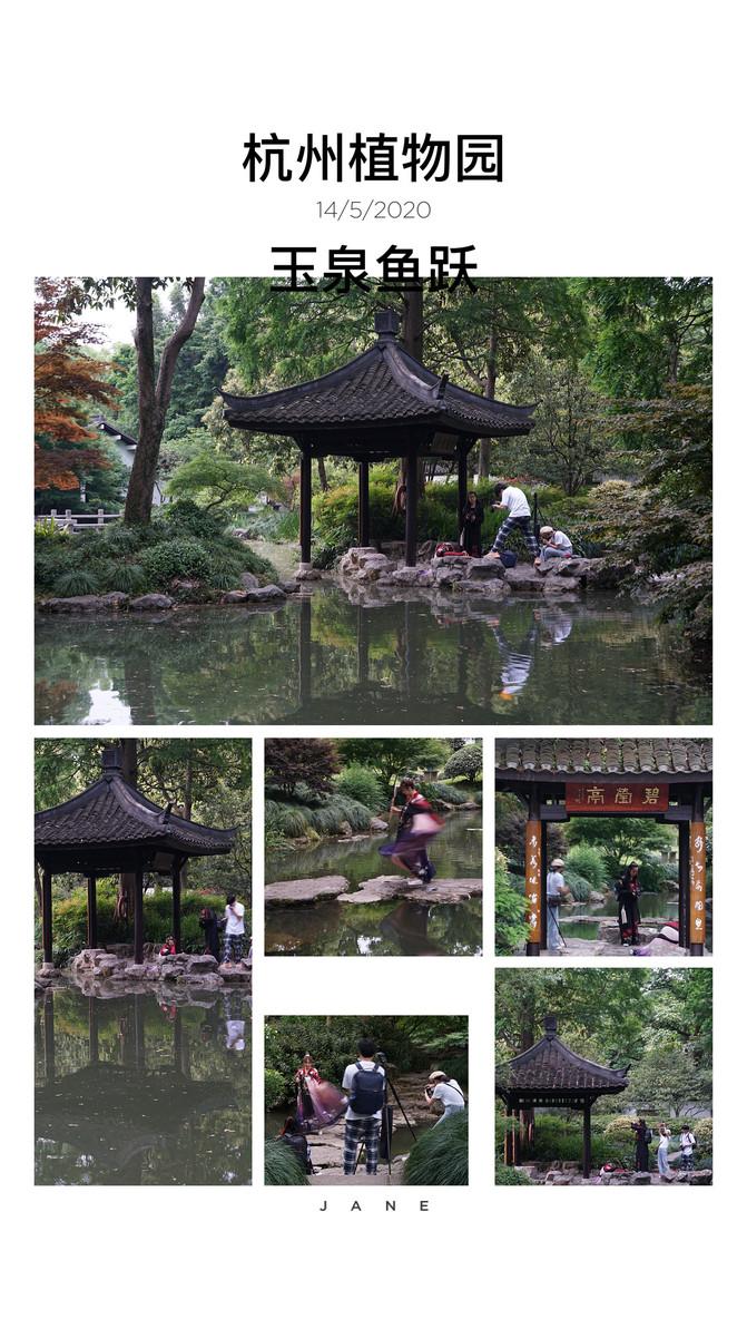 两日杭州青芝坞的静谧时光 – 杭州游记攻略插图64