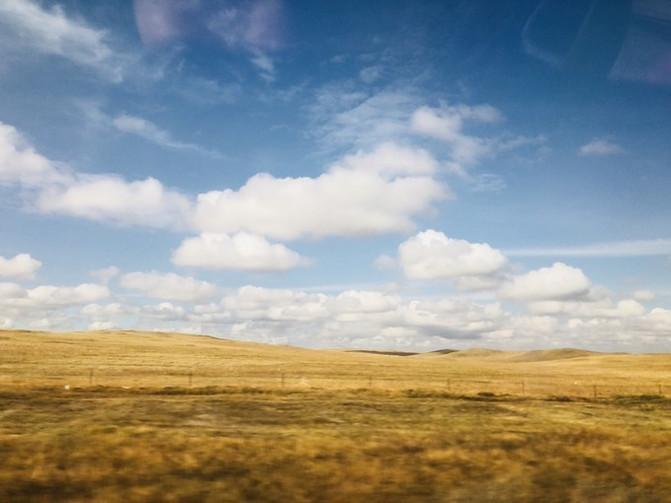呼伦贝尔大草原 一万个人眼中有一万种呼伦贝尔大草原的秋 – 呼伦贝尔游记攻略插图87