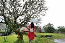 那些行走在路上的时光--越南岘港、顺化那一场时光交错的旅行