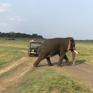 米内日亚国家公园旅游景点攻略图