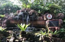 马来西亚吉隆坡雀鸟园半日游