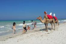 突尼斯自驾游第五天:杜兹~马特马他~杰尔巴岛