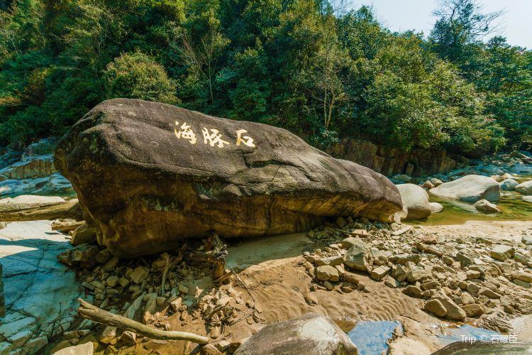 Nanling National Forest Park4