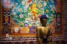 从西宁的博物馆和公园出发,走近青海藏族文化
